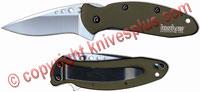 Kershaw Scallion, Olive Drab Aluminum, KE-1620OL