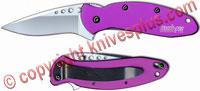 Kershaw Scallion, Purple Aluminum, KE-1620PUR